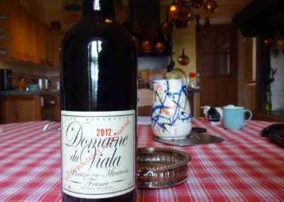 vin-viala-2012
